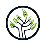 Logodesign für Baum stock abbildung