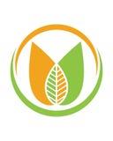 Logoer av den gröna symbolen för vektor för beståndsdel för bladekologinatur Royaltyfri Foto