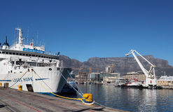 Logohopp som ansluter i Cape Town Royaltyfria Bilder
