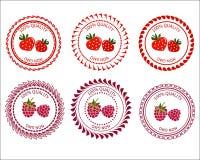 Logojordgubbar och hallon Arkivbilder