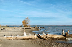 Logon песчаный пляж Стоковые Изображения