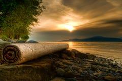 Logon-felsiges Ufer mit warmem Sonnenuntergang Stockbild