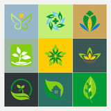 Logos della foglia della pianta di ecologia Fotografia Stock Libera da Diritti