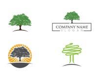 Logos of green leaf ecology nature Royalty Free Stock Image