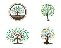 Logos of green leaf ecology nature Stock Images
