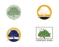 Logos of green leaf ecology nature Royalty Free Stock Photo