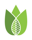 Logos of green leaf ecology nature element vector icon Royalty Free Stock Photography