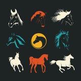 Logos horse Royalty Free Stock Photos