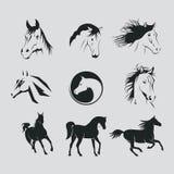 Logos horse Stock Photos