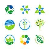 Logos naturale di ecologia dell'ambiente della foglia Immagini Stock Libere da Diritti