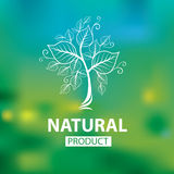 Logos naturale organico Immagine Stock Libera da Diritti