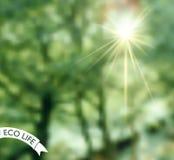 Logotipo con la foto borrosa como fondo Fotos de archivo libres de regalías