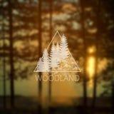 Logotipo con los árboles forestales Imagenes de archivo
