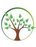 Logotipo da árvore Imagens de Stock
