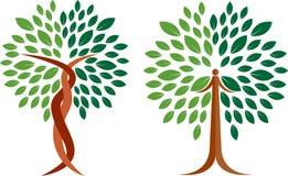 Logotipo da árvore da coleção Fotografia de Stock