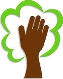 Logotipo da árvore da mão Foto de Stock
