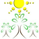 Logotipo da árvore de Sun ilustração stock