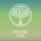 Logotipo da árvore do vetor ilustração royalty free
