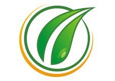 Logotipo da folha Fotos de Stock Royalty Free