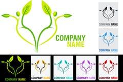 Logotipo da folha dos pares Imagens de Stock