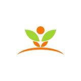 Logotipo da folha dos termas da planta da beleza Fotografia de Stock