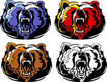 Logotipo da mascote do urso Fotos de Stock