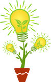 Logotipo da planta da folha Imagem de Stock Royalty Free