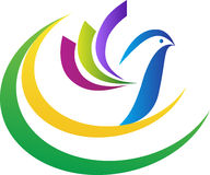 Logotipo da pomba ilustração stock