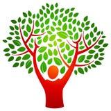 Logotipo da árvore da pessoa Foto de Stock
