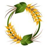 Logotipo das grões do trigo Fotografia de Stock Royalty Free