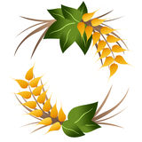 Logotipo das grões do trigo Foto de Stock