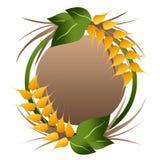 Logotipo das grões do trigo Imagens de Stock