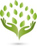 Logotipo das mãos, das folhas, do naturopath e da natureza ilustração stock