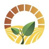 Logotipo de la agricultura Logotipo con un campo del trigo Logotipo estilizado del eco Campos verdes de la energía Ilustración de stock de ilustración