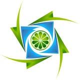 Logotipo de la cal Foto de archivo libre de regalías
