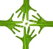 Logotipo de la estrella de las manos Fotos de archivo libres de regalías