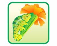 Logotipo de la flor del camaleón Imagenes de archivo