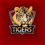 Logotipo de los deportes profesionales, plantilla del emblema con la imagen del tigre Imagen de archivo libre de regalías