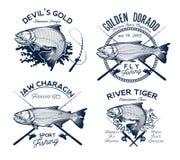 Logotipo de oro de la pesca de Dorado Ilustración del vector libre illustration