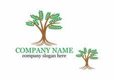 Logotipo del árbol Imagen de archivo