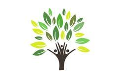 Logotipo del árbol de familia Imagenes de archivo