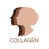 Logotipo del colágeno stock de ilustración