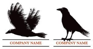 Logotipo del cuervo Fotos de archivo