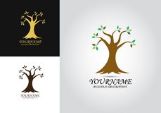 Logotipo del diseño de la hoja del árbol ilustración del vector