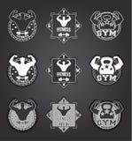 Logotipo del gimnasio Sistema de emblemas monocromáticos de la aptitud, de etiquetas, de insignias, de logotipos y de elementos d Imagen de archivo libre de regalías