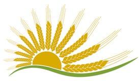 Logotipo del sol con trigo ilustración del vector