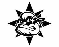 Logotipo del turle de Ninja Imagen de archivo libre de regalías