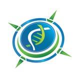 Logotipo do compasso ilustração stock