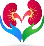 Logotipo do cuidado do rim Foto de Stock