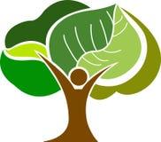 Logotipo do homem da árvore Imagens de Stock Royalty Free